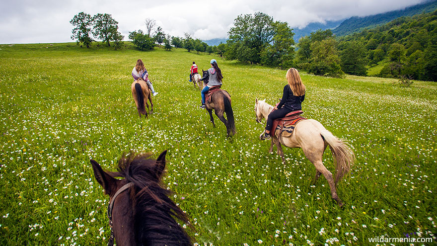 Horseback riding tours in Armenia