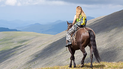Horse riding mount Armaghan
