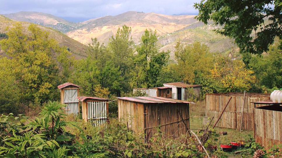 ARK Armenia Campsite